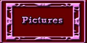 Buy Pics
